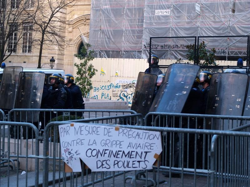 http://www.humourr.com/divers/images-humour/confinement_de_poulets.jpg